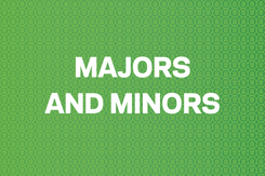 Majors and Minors Button